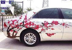 car wrapping  spring in China!