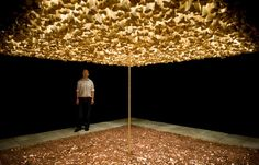 How to Build a Cathedral - Cildo Meireles, 1987, bones and pennies, in Blanton, Austin TX