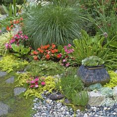 You don't need a lot of space to start a rock garden. Find a corner of your yard or garden and give it a try to see if it suits you first.