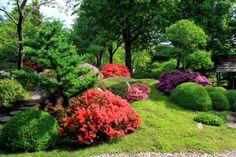 kolorowe akcenty w ogrodzie