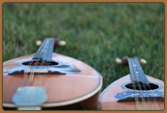 Side by Side Roundback Mandolin and Mandola in the Grass