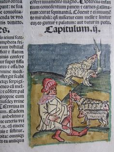 Late medieval shepherd with sheep. He appears warmly dressed with hat, scarf, and boots. This page from an early printed book is described as an Incunabula. Middle Ages, Venice, Sheep, Medieval, Weaving, Camps, Madness, Prints, Hat