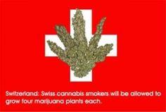 Switzerland marijuana hbtv hemp beach tv