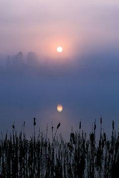 Misty Sunrise, Otley, England | via Flickr.