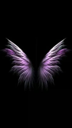 Just love these wings