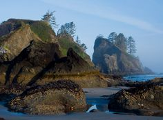Shi Shi Beach, Olympic National Park in Washington.