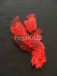 Red Spotted Guinea Hen Feather 12 PIECESSMALL loose by pegasus22, $1.80