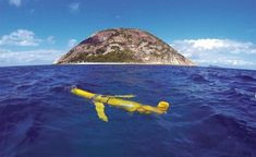The rise of ocean robots Research Field, Throughout The World, Robots, Mammals, Aviation, Cruise, Ocean, Science, Stock Photos