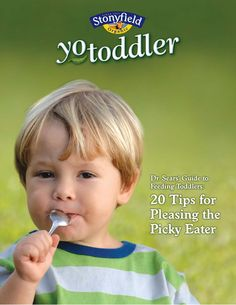 Dr. Sears' Guide to Feeding Toddlers: 20 Tips for Feeding the Picky Eater...download