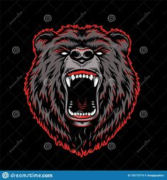 Aggressive Grizzly Head Colorful Template Stock Vector - Illustration of background, angry: 152172714 Card Costume, Bear Vector, Funny Character, Black Kids, Cool Cards, Funny Kids, Girl Gifts, Graphic Prints, Vintage Fashion