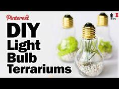DIY Light Bulb Terrariums - Man Vs Pin - Pinterest Test #56 - YouTube