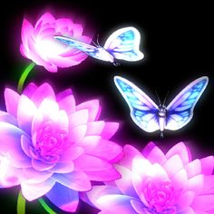 Neon Butterfly Backgrounds | Neon Glow Butterfly Wallpaper Blue Butterfly Wallpaper, Butterfly Background, Pink Butterfly, Butterflies, Neon Glow, Hot Pink, Neon Signs, Detail, Color