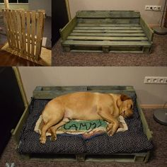 Fantastic Photo Wonderful Screen Fantastic Photos raised dog kennel Ideas Many . Fantastic Photo Wonderful Screen Fantastic Photos raised dog kennel Ideas Many people which pur… Wood Dog Bed, Pallet Dog Beds, Diy Dog Bed, Diy Bed, Diy Dog Kennel, Kennel Ideas, Wooden Pallet Projects, Pallet Wood, Dog Rooms