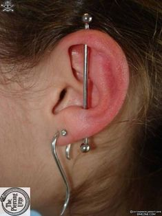 Jul 2016 - Check out Industrial Piercing photo gallery on Piercing Easily to see a variety of examples. Get advice from our experts on safe piercing. Different Ear Piercings, Cool Piercings, Tragus Piercings, Piercing Tattoo, Body Piercing, Cartilage Earrings, Cute Jewelry, Body Jewelry, Jewlery