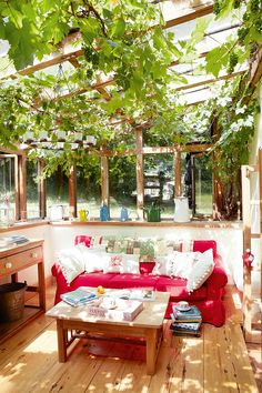 Garden room.  Just off the kitchen, the garden-room extension is awash with dappled light thanks to a grapevine growing up and through it, giving the sense of sitting outside. An Ikea sofa alongside vintage enamelware on the windowsill adds a splash of colour to the pine flooring and furniture