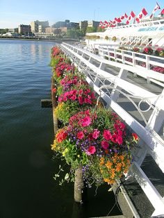 Inner Harbour, Victoria BC by suey_j, via Flickr