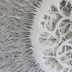 Beautiful paper cut intricate organic forms by Rogan Brown