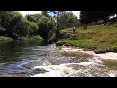 Let's do this this summer!! Rere Rock Slide Gisborne NZ