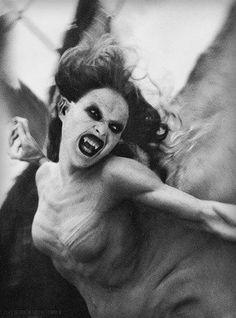 Van Helsing Bride of Dracula Vampire Dracula, Vampire Love, Female Vampire, Vampire Art, Buffy The Vampire Slayer, Vampire Bride, Horror Art, Horror Movies, Creepy