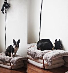 Faux fur stacked dog bed DIY from child's mattress.