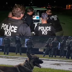 And Below Suka During Swat Training Getting Acclimated To Being Around Gunfire Cape Coral Police Department
