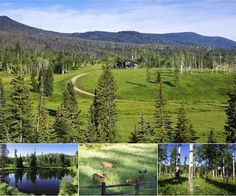 Featuring a diverse landscape of aspen groves, dark timber, mountain meadows, sagebrush & creeks, Colorado's J Bar Unit of Lost Elk Ranch is an exceptional wildlife property. Home to trophy-caliber elk, mule deer, black bear and an occasional moose, this ranch is comprised of 1,378± acres, including 738± deeded acres plus adjacent 640± acres of state land controlled by the ranch. The ranch also has abundant water with 3 streams, stocked fishing ponds, historic water rights & irrigated…
