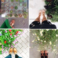 summertime calls for standing next to lush plants in your cute clogs