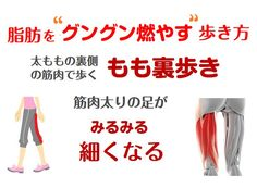 Pin on トレーニング Health Diet, Health Fitness, Human Body Structure, M Beauty, Lose Body Fat, Body Makeup, Face And Body, Body Care, Workout