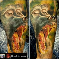 Repost from @makskornev     6hrs done at the @florencetsttooconvention with @worldfamousink @fkirons @inkbooster @dermalizepro @electrumstencilproducts @pro_t_ink  2place best of day. #worldfamousink #fkirons #direkt2 #makskornev #color #realistictattoo #colortattoo #monkey #bestink #best_tattoo