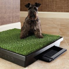 Pet Loo Indoor Yard Training System