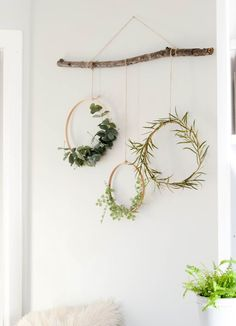 Diy and crafts diy projects - Simple winter decorating idea - wreaths hanging from a branch tutorial how-to D. Winter Home Decor, Winter House, Decoration Branches, Tree Branch Decor, Branch Art, Hanging Decorations, Diy Wall Decor, Diy Home Decor, Creative Wall Decor