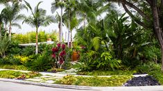 Front yard: After   See how a boring Southern California yard got a stunning Hawaiian makeover, complete with tropical plants and a lagoon