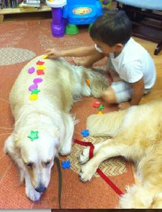 Autism service Dogs.  This is so touching.