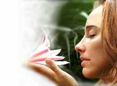 The Best Natural Aromatherapy Essential Oils from NOW Solutions