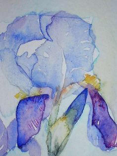 Watercolour painting of Irises original art by TheMinervaGallery