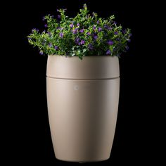 Scenting.com - Sprout Aroma Diffuser (Terracotta), $94.99 (http://www.scenting.com/diffusers/sprout-aroma-diffuser-terracotta/)