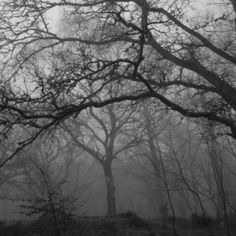 Epping Forest, Essex: The ghost of the legendary highwayman Dick Turpin is said to haunt the forest. Boudica is also believed to haunt the forest. People report being pushed or touched by unseen hands. At Hangman's Hill, there have been reports of an apparition of a man being seen in the wooded area. Terrifying screams are also heard here. It is said, that if you leave your car in neutral on the hill, your car will appear to roll upwards towards the tree where people have been hanged.