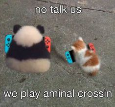 Prepare To Be Wooed By This Caturday Mood Cat Memes) - World's largest collection of cat memes and other animals Fb Memes, Funny Memes, Reaction Pictures, Funny Pictures, Memes Lindos, Haha, Animal Crossing Funny, Ac New Leaf, Doja Cat
