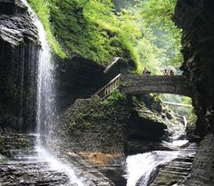 Summer Escapes: The Finger Lakes