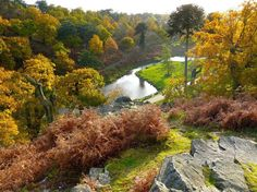 Bradgate Park - Charnwood Forest, Leicestershire