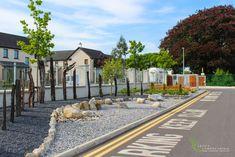 Gravel Garden and Bog Oak. Garden Design, by Tom Leavy_ Leavy Landscaping. Gravel Garden, Garden Landscaping, Landscape Design, Garden Design, Ireland Landscape, Stone Carving, Celtic, Past, Sidewalk