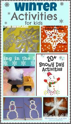 Winter Activities for Kids ~ Growing A Jeweled Rose - this lady has AWESOME ideas all over her site, worth a look
