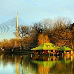 ponocnijahac's photo-Beograd