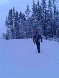 Snowy Hälsingland