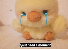 Funny Reaction Pictures, Funny Pictures, Stupid Memes, Funny Memes, Duck Memes, Wholesome Pictures, Response Memes, Current Mood Meme, Cute Messages