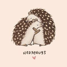 Are you open for some hedgehugs? #positivitynote #upliftingyourspirit
