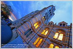 London Natural History Museum - Travel and History