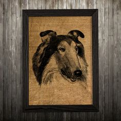 Collie print. Dog poster. Animal decor. Burlap print.  PLEASE NOTE: this is not actual burlap, this is an art print, the image is printed on art