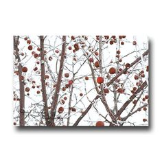 Modern Wall Art  Home Decoration  Red Apples  by CrystalGaylePhoto