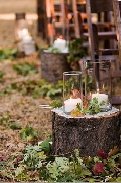 Love this aisle decor, the tree stumps, the leaves, the candles- so charming together.